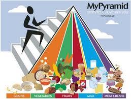 american food pyramid food based dietary guidelines in europe