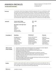 Beginner Resume Template Resume Summary Examples Entry Level Writing An Entry Level Resume