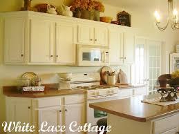 Vintage White Kitchen Cabinets Interesting Painting Kitchen Cabinets Antique White Before And