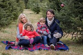 sarah whitwell photography custom holiday card mini session