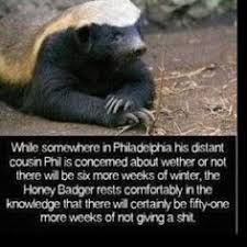 Honeybadger Meme - also known as the ex wife honey badger meme http jokideo com