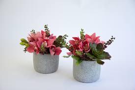 artificial orchids pair grey pots secret blooms