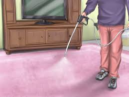 How Long Do Fleas Live In Carpet How To Kill Fleas And Ticks On Cats With Pictures Wikihow