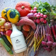 thanksgiving farm farm to table thanksgiving peterson garden project