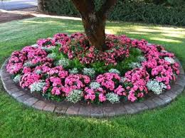Garden Flowers Ideas Flower Bed Ideas For Attractive Side Of Your Garden