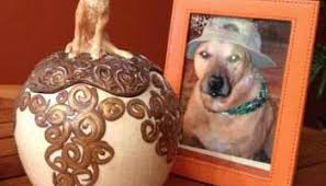 urns for dogs best custom dog urns for ashes petswithlove us