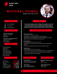 Best Visual Resume Templates by 50 Most Professional Editable Resume Templates For Jobseekers