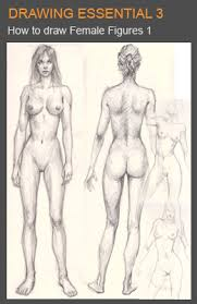 learn to draw female figures and anatomy