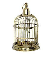 pindia home decor hanging fancy brass pet birds cage amazon in