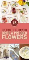Drying Flowers In Books - best 25 pressing flowers ideas on pinterest dried flowers