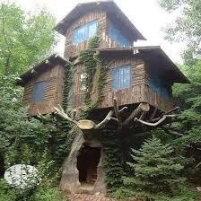 three house a three tree house imgur