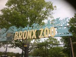 Bronx Zoo Holiday Lights by Angry Birds Movie Thirtymommy