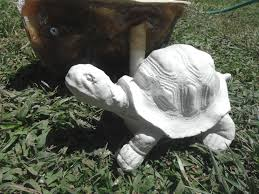 concrete plaster mold made of and fiberglass the turtle