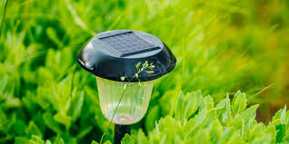 reasons you should use solar lights around your home