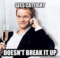 Cat Fight Meme - sees catfight doesn t break it up barney stinson based quickmeme