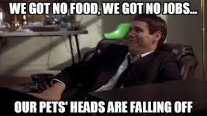 Dumb And Dumber Memes - 9 dumb and dumber quotes not to live your life by the daily edge