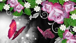 pink butterfly hd pink roses butterfly shine wallpaper