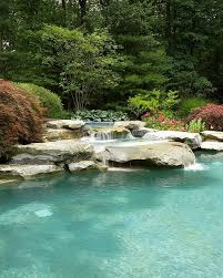 Natural Backyard Pools by Best 25 Pool Waterfall Ideas On Pinterest Grotto Pool Outdoor