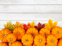 autumn pumpkin thanksgiving background stock photo image 44897087