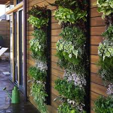 Urban Wall Garden - permaculture for urban homes and small spaces these light footsteps