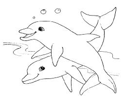 coloriage de dauphin  baccanoinfo