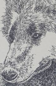 belgian sheepdog origin 32 best belgian sheepdog dog art portraits photographs