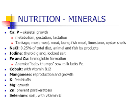 Sow Gestation Table Swine Reproduction Chapter 22 Nutrition Chapter Ppt Video Online