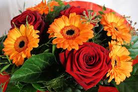 s day floral arrangements free images blossom petal bloom gift orange