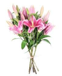 Same Day Flowers Flower Haul Same Day Flowers Same Day Delivery Order By