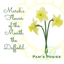 Flower Of The Month March Sflowerof Themonththedaffodil Png T U003d1488507578