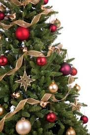 real christmas tree delivery london u0026 uk order xmas trees online
