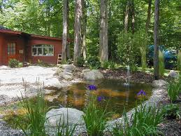 native and adapted landscape plants hollowell u0026 associates inc water features