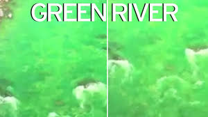 river turns incredible bright green colour sparking fears it could