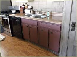 Kitchen Sinks And Cabinets by 60 Inch Kitchen Sink Base Cabinet Best Sink Decoration