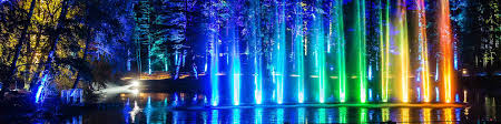 enchanted forest of light tickets buy tickets for the enchanted forest in scotland
