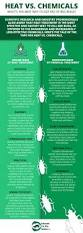 Treatment For Bed Bugs Fastest Way To Get Rid Of Bed Bugs Heat Vs Chemicals