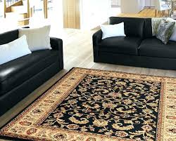 Trendy Area Rugs Trendy Area Rugs Awe Inspiring Well Woven Bright Trendy Twist Iron