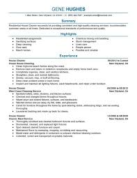 home cleaning business plan wonderful business plan for house cleaning service pictures ideas