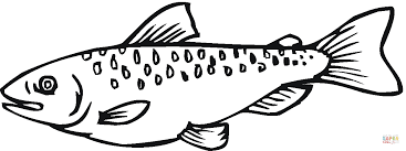 salmon fish coloring page salmon 18 coloring page free printable coloring pages