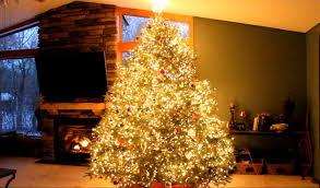 How To Fix Christmas Tree Lights Christmas Christmas Tree Light Ideas Inspiration How To Fix