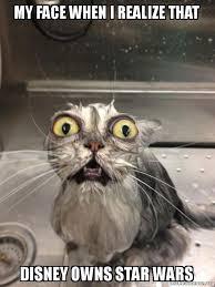 Star Wars Cat Meme - my face when i realize that disney owns star wars cat bath