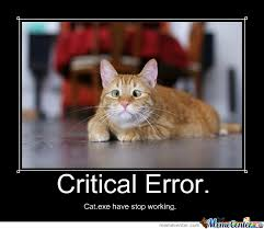 Working Cat Meme - exe have stop working by soulbaal meme center