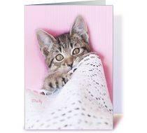 extra sugar sweet kitten birthday card greeting card luvkelly