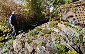 Rock Garden Society Their Rock Gardens