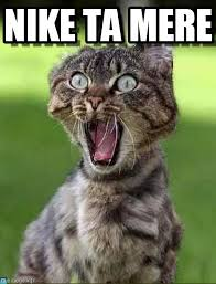 Mere Cat Meme - nike ta mere screaming cat meme on memegen