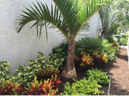 download tropical landscape design solidaria garden