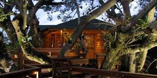treehouse homes for sale 10 best treehouse plans and designs coolest tree houses ever