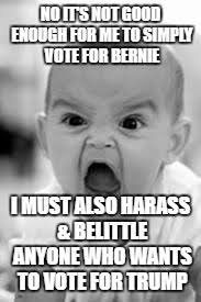 Not Good Enough Meme - sanders supporters if your candidate is good enough he ll win