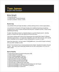 Sample Php Developer Resume by Front End Developer Resume Download Front End Web Developer