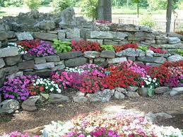 shade plants in a rock garden rock garden pinterest rock